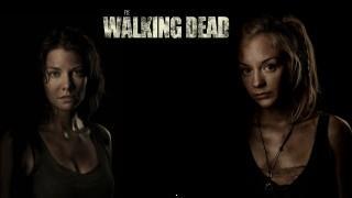 The walking dead hd wallpaper actors