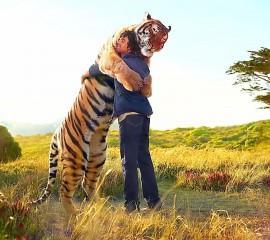 Tiger hug