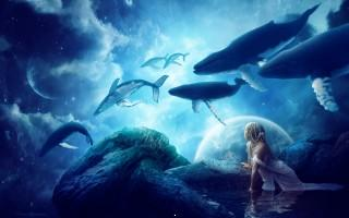 Whales dream ,wide,wallpapers,images,pictute,photos