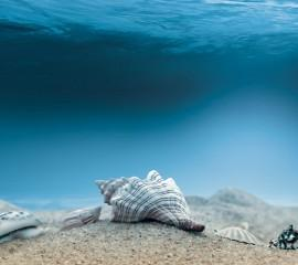 Underwater ,wide,wallpapers,images,pictute,photos