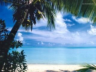 Praia paradisiaca oceano