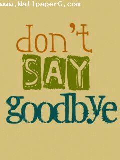 Dont say goodbye