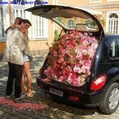 A full car of flowers