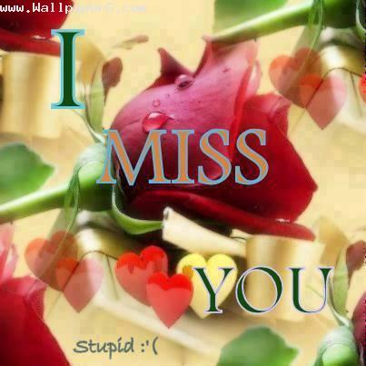 I miss you stupid ,wide,wallpapers,images,pictute,photos