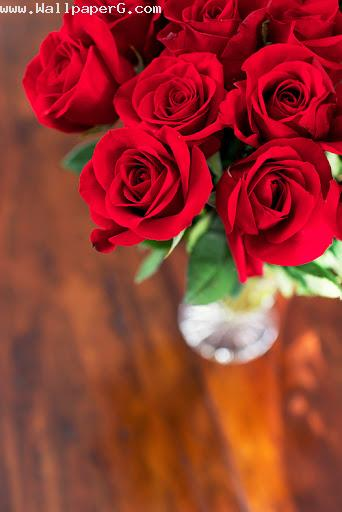 Happy rose day 1 ,wide,wallpapers,images,pictute,photos