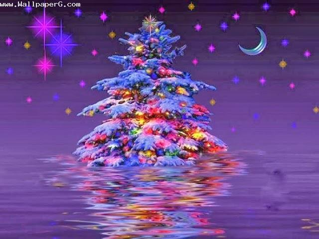 Christmas tree ,wide,wallpapers,images,pictute,photos