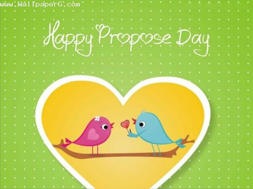 Propose by love birds