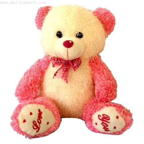 A pink teddy bear of love