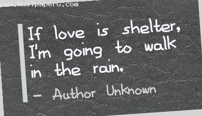 If love is shelter break