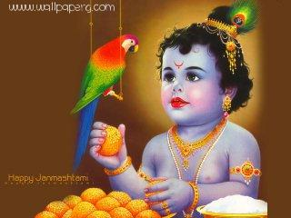 Krishna with parrot ,wide,wallpapers,images,pictute,photos