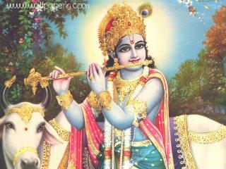 Krishna(3) ,wide,wallpapers,images,pictute,photos