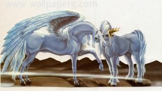 Unicorn and pegasus ,wide,wallpapers,images,pictute,photos