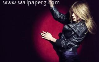 Boarse ,wide,wallpapers,images,pictute,photos