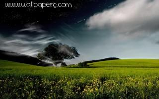 Day or night ,wide,wallpapers,images,pictute,photos