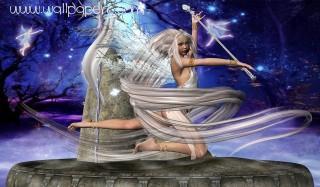 Fairy(3)