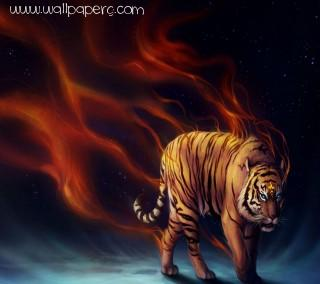 Fire tiger hd