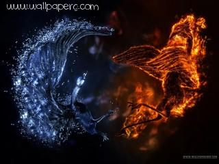 Fire and water elemental