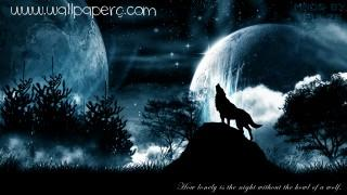 Howling wolf ,wide,wallpapers,images,pictute,photos