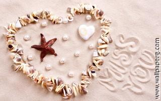 Seashell heart ,wide,wallpapers,images,pictute,photos
