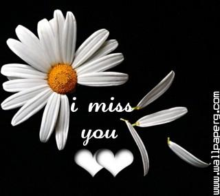 I miss you(5)(1)