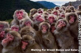 Funny diwali greeting