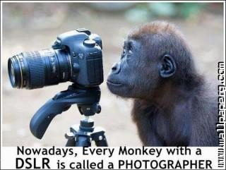 Funny photography joke