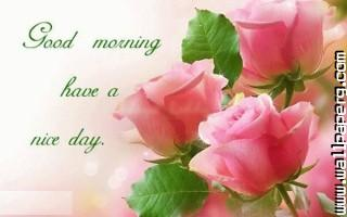 Happy morning have a nice day ,wide,wallpapers,images,pictute,photos