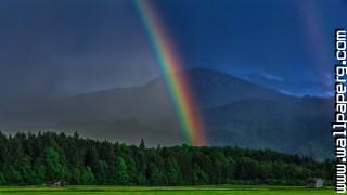 Rainbow in a dark bavarian forest