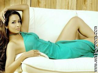 Malaika arora khan gorgeous brunette model