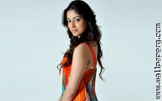 Yami gautam ,wide,wallpapers,images,pictute,photos