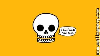 Funny minimalistic skulls text awesome wallpaper