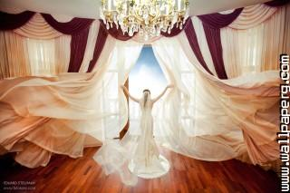 Angel bride ,wide,wallpapers,images,pictute,photos