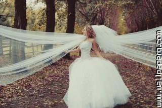 Bride 3 ,wide,wallpapers,images,pictute,photos