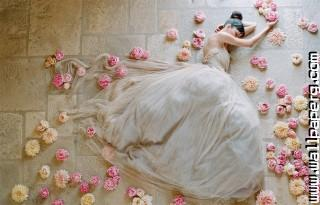 Dreamy bride ,wide,wallpapers,images,pictute,photos