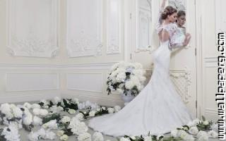 Bride style ,wide,wallpapers,images,pictute,photos