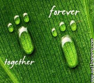 Footprints ,wide,wallpapers,images,pictute,photos