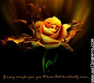 For you(1) ,wide,wallpapers,images,pictute,photos