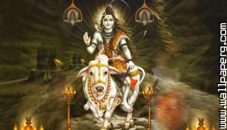 Shiva nandi ,wide,wallpapers,images,pictute,photos