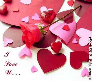 I love u ,wide,wallpapers,images,pictute,photos
