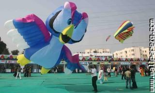 Sakranti40 ,wide,wallpapers,images,pictute,photos