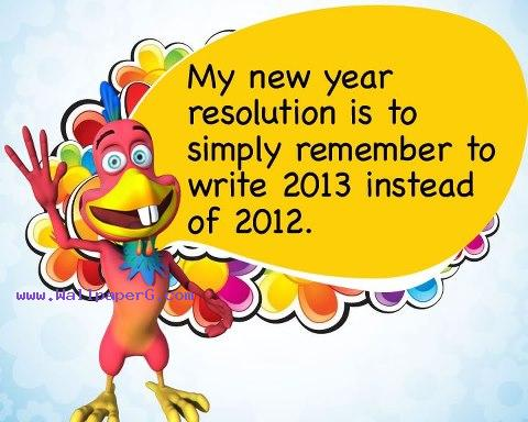 2013 new year resolution