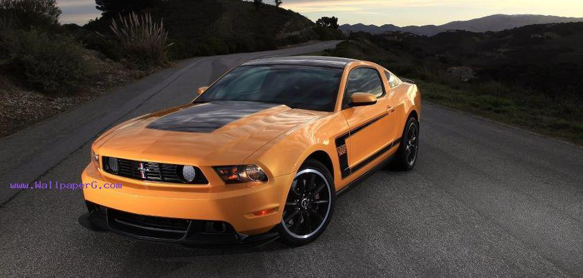 Ford mustang boss 302, 20