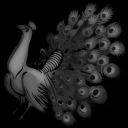 Pavo ,wide,wallpapers,images,pictute,photos