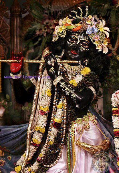 Murli wale krishna ji ,wide,wallpapers,images,pictute,photos