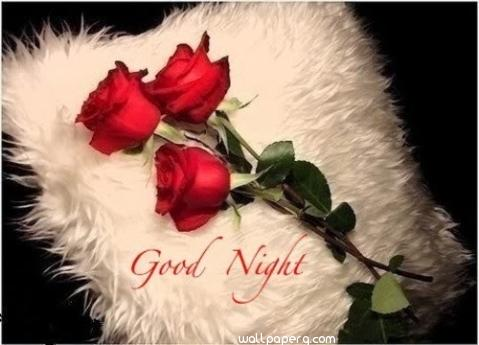 Good night sms message red rose hdwallpapers