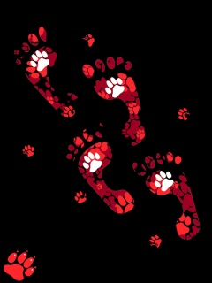 Foot print ,wide,wallpapers,images,pictute,photos