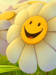 Happy sun flower