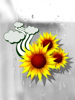 Sky and sun flower ,wide,wallpapers,images,pictute,photos