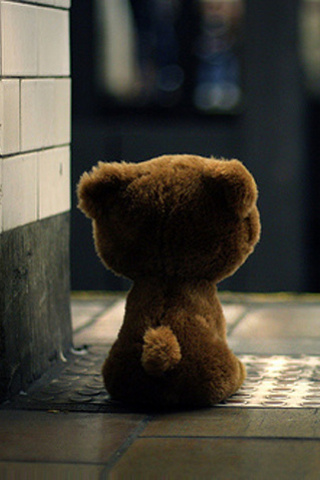 Bear ( 320x480) ,wide,wallpapers,images,pictute,photos