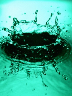 Water drops ,wide,wallpapers,images,pictute,photos